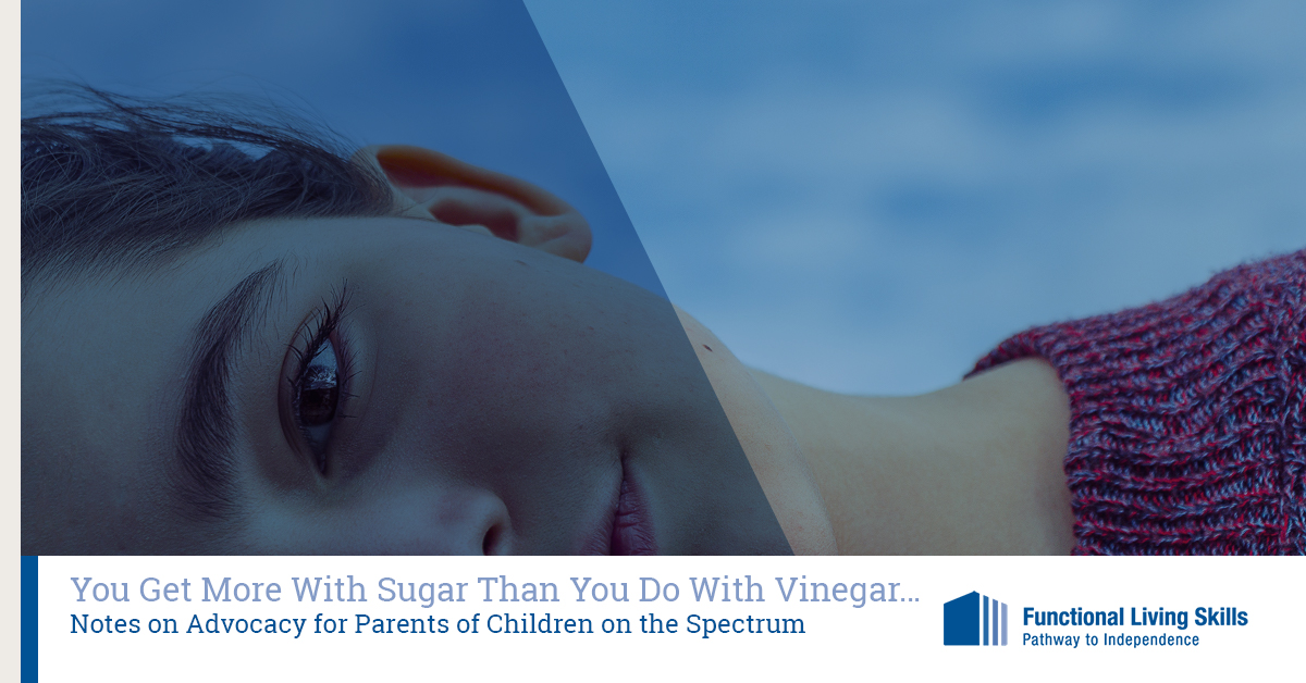 Parent Advocacy What You Should Do And >> You Get More With Sugar Than You Do With Vinegar Notes On